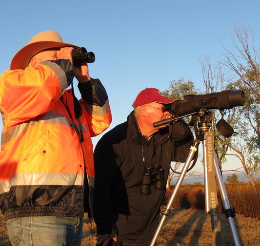 Outback Ecological Surveys
