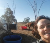 business farming woman family cattle outback Queensland Roma